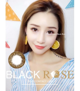 DREAMCON BLACKROSE 宸依 BROWN