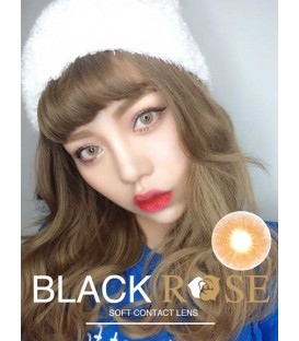 DREAMCON BLACKROSE 極光二代 BROWN