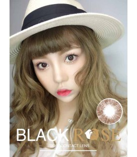 DREAMCON BLACKROSE 極光二代 CHOCO