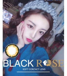 DREAMCON BLACKROSE 雪環 BROWN