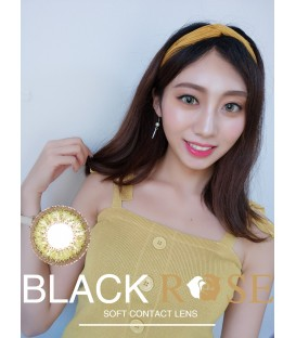 DREAMCON BLACKROSE 花影 BROWN